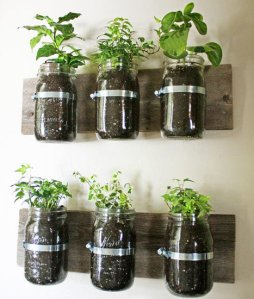 Create-Indoor-Herb-Garden