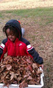 composting1