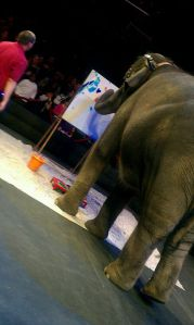 QC SUpermom Pre show  time at the circus
