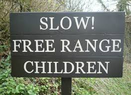 Free range  children -chicken